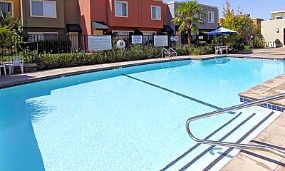 Pool, Palm Terrace, 2
