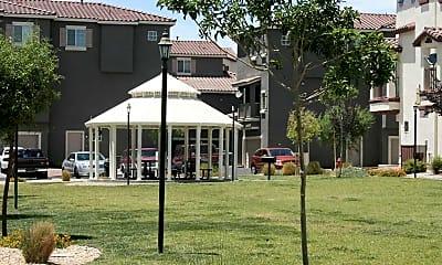 Recreation Area, Palmilla, 2