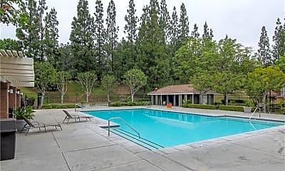 Pool, 13420 Fontwell Ct 34, 2