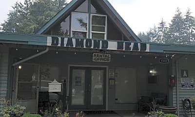 Diamond Head, 1
