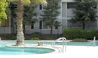 Pool, Willowbrook Apartments, 0