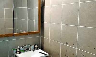 Bathroom, 2114 S 11th St, 2