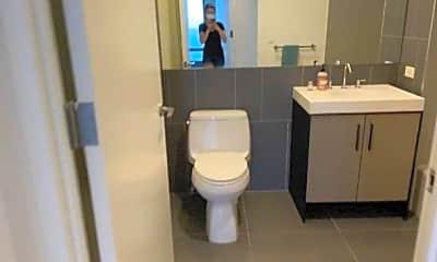 Bathroom, 246 Ashland Pl, 2