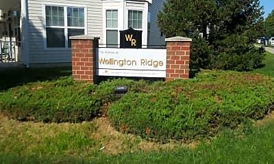 Wellington Ridge, 1