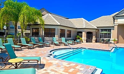 Pool, The Enclave at Wesley Chapel, 1