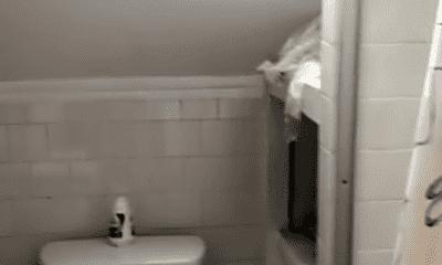 Bathroom, 27 Hawes St, 2