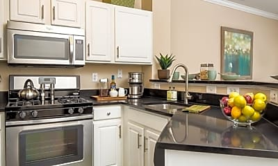 Kitchen, The Townes at Herndon Center, 1