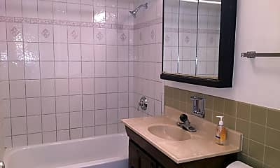 Bathroom, 1333 W Touhy Ave 203, 2