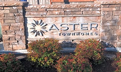 Aster Townhomes, 1