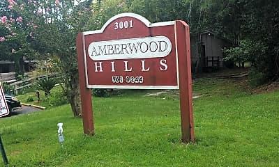 Amberwood Hills, 1
