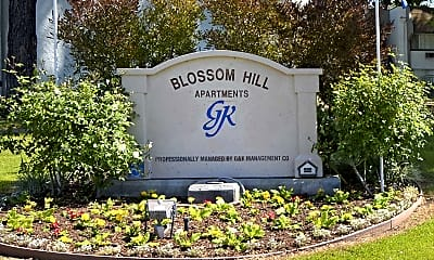 Community Signage, Blossom Hill, 2