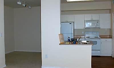 Kitchen, 8910 North Loop 1604 West, 1