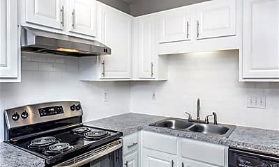 Kitchen, Mission Triangle Point, 1