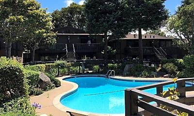 Pool, 456 Dela Vina Ave, 1