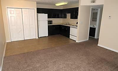 Kitchen, 4107 Blue Lick Ct, 0