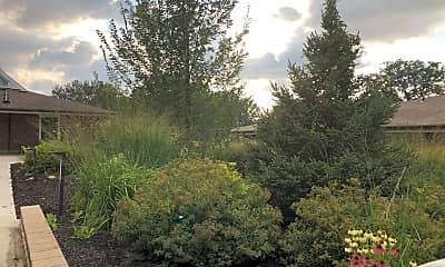 Council Gardens, 0