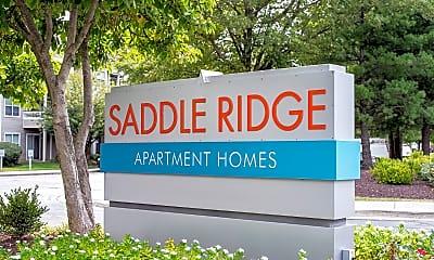 Saddle Ridge, 2