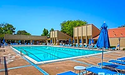 Pool, 4713 Holston River Ct., 2