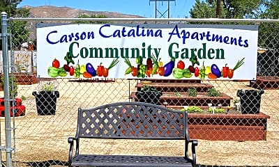 Landscaping, Carson Catalina, 1