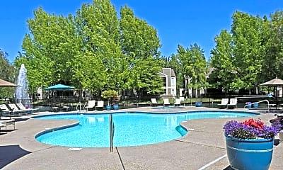 Pool, Harbor Oaks Luxury Apartments, 0