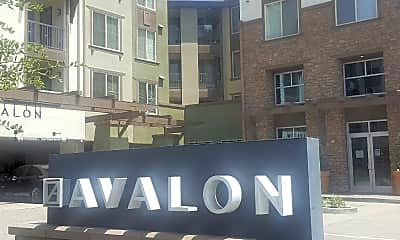 Avalon Bay Apartments with Retail, 0