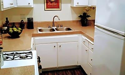 Kitchen, Mariposa, 1