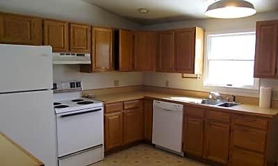 Kitchen, 320 Dawson Ave, 1