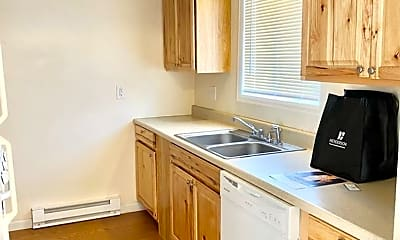 Kitchen, 1327 Nickel Dr, 1