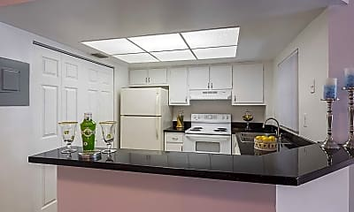 Kitchen, Boca Colony, 1