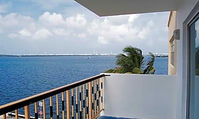 Palms on the Bay, 1