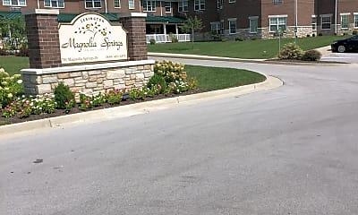 Magnolia Springs Apartments, 0