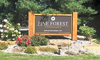Pine Forest Townhouses, 1