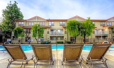 Pool, Greystone Apartment Homes, 0