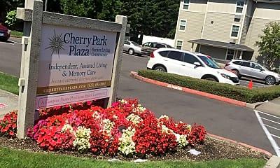 Cherry Park Plaza, 1
