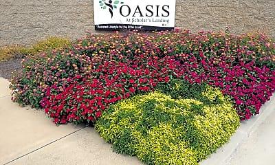 Oasis at Scholars Landing, 1