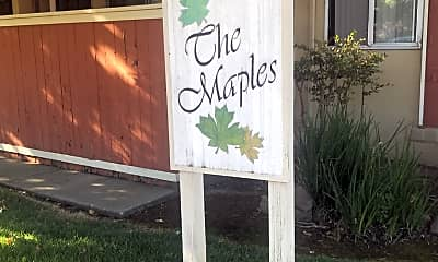 The Orchards - The Maples, 1