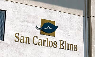 San Carlos Elms & Grove, 1