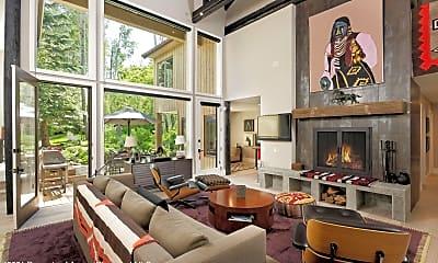 Living Room, 1145 Black Birch Dr, 1