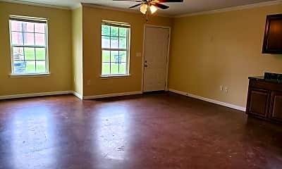 Living Room, 1229 Pecan St, 1