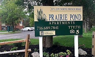 Prairie Pond, 1