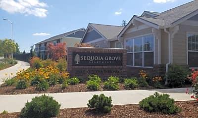 Sequoia Grove, 1
