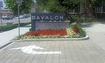 Avalon Bay Apartments with Retail, 1