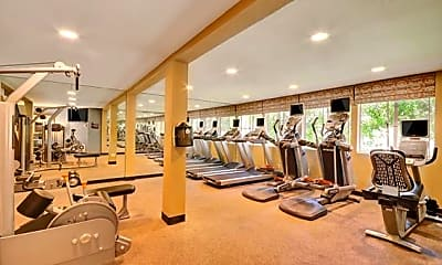 Fitness Weight Room, Rising Glen, 0