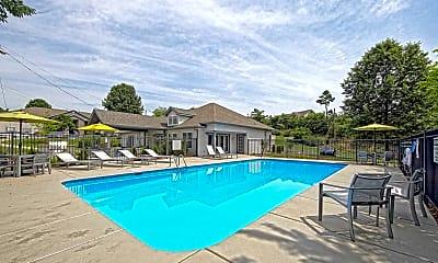 Pool, Mountain Brook, 1