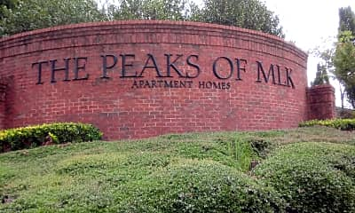 Peaks at Martin Luther King, 1