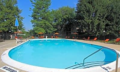 Pool, Brinkley Manor, 1