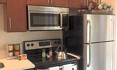 Kitchen, Ellis Flats, 1