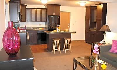 Kitchen, 251 River St, 2