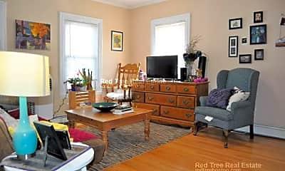 Living Room, 41 Mt Pleasant St, 1