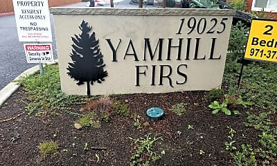 Yamhill Firs, 1